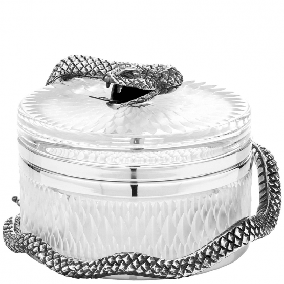 Objets de Luxe ❖ Crystal box with silver snake - small